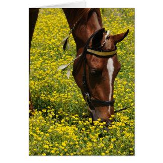 Caminante con las flores amarillas tarjeta