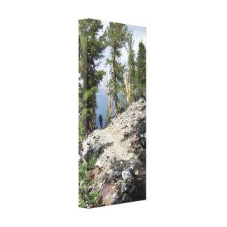 Caminante del rastro de John Muir - montañas de Impresión En Lienzo