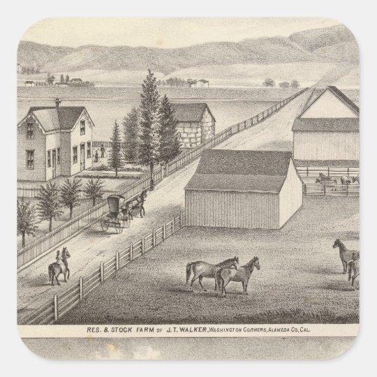Caminante, residencias de Knittel, granjas Pegatina Cuadrada