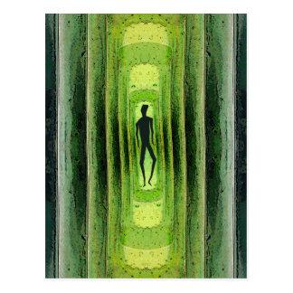 Caminante verde delgado postal