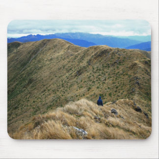 Caminar el desierto salvaje de Nueva Zelanda Tapetes De Ratón