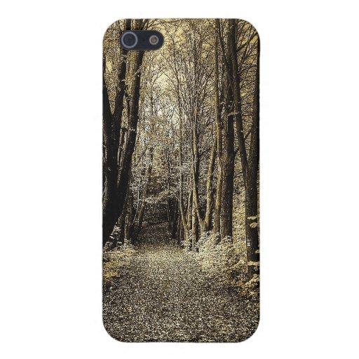 Camino a través del bosque iPhone 5 protector