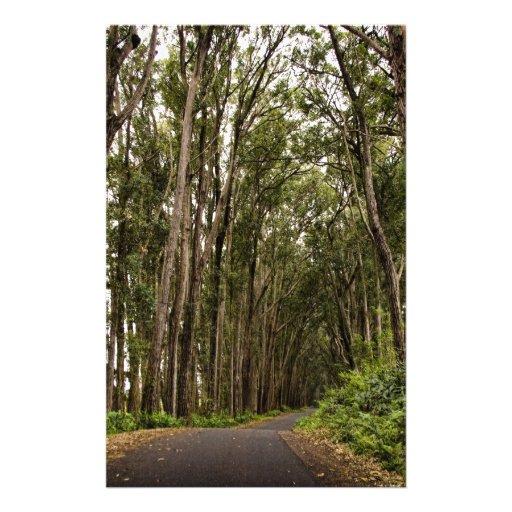 Camino alineado árbol papelería de diseño