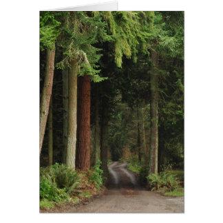 Camino alineado con los abetos tarjeta de felicitación