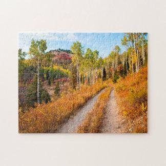 Camino con colores del otoño