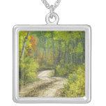 Camino con colores del otoño y álamos tembloses en colgantes personalizados