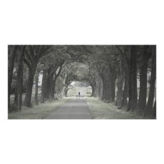 Camino de Holanda Tarjetas Fotográficas