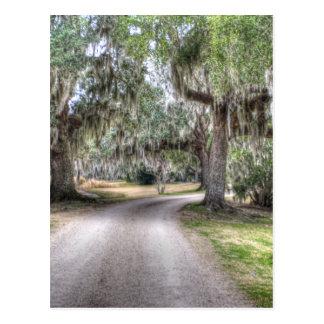 Camino de la isla de Avery Tarjetas Postales