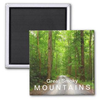 Camino de la montaña de Greenbrier - Great Smoky M Imán Cuadrado
