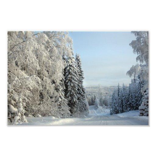 Camino de la nieve cojinete