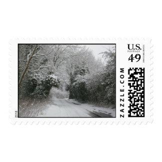 Camino de la nieve sello