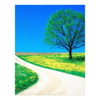 Camino de la primavera de las flores de los árbole plantilla de membrete