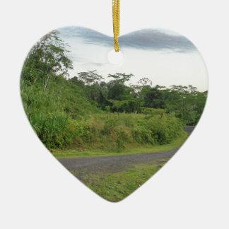 camino de la selva adorno
