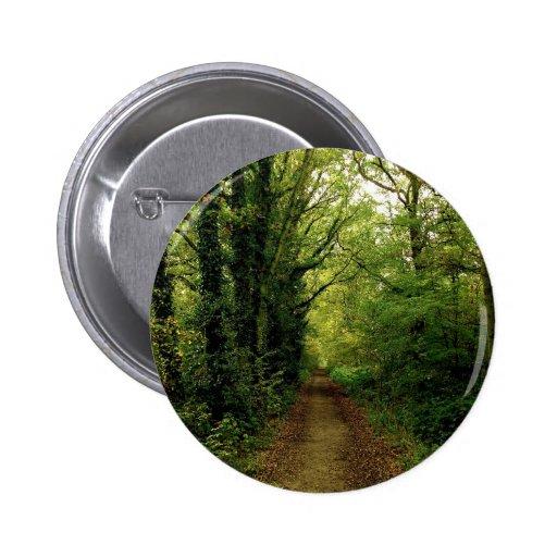 Camino de las naturalezas del árbol pins