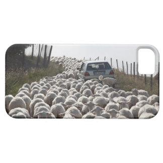 camino de las tierras de labrantío de Toscana, coc iPhone 5 Case-Mate Cobertura