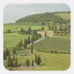 Camino de Pienza a Montepulciano, Calcomanias Cuadradas