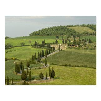 Camino de Pienza a Montepulciano, Postales