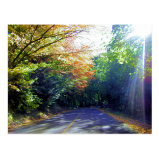 Camino de Portland, Oregon a la rosaleda Tarjeta Postal