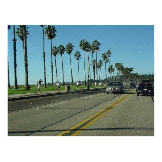 Camino de Santa Barbara Palmtrees Tarjeta Postal