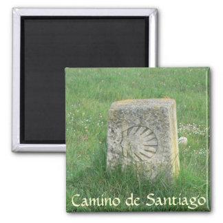Camino de Santiago Magnet