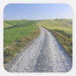Camino de tierra a través de los campos y de las colcomania cuadrada