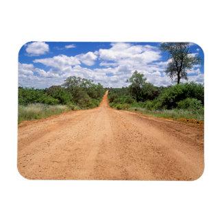 Camino de tierra, parque nacional de Kruger, Iman