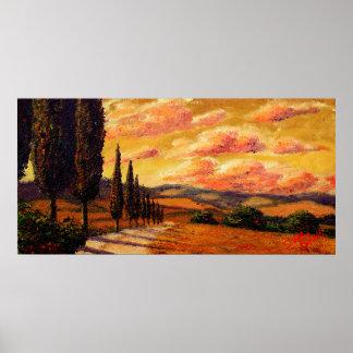 Camino de Toscana Cypress Impresiones