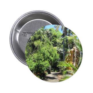Camino del árbol del helecho pins