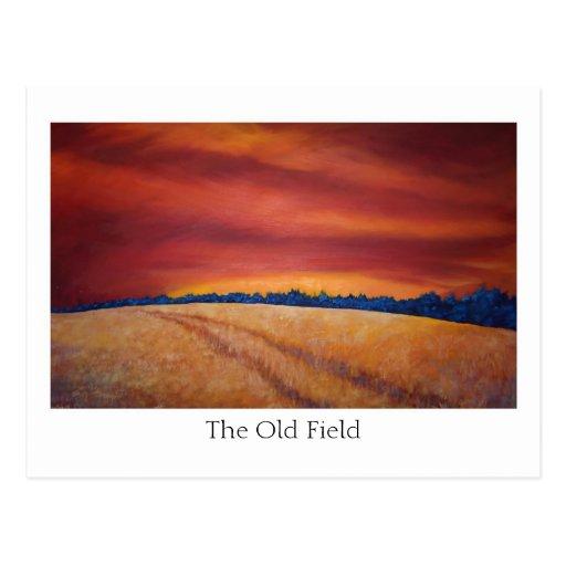 camino del campo, el viejo campo tarjeta postal