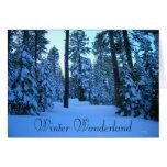 Camino del invierno al puesto de observación del tarjeta pequeña