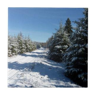 Camino del invierno azulejo cuadrado pequeño