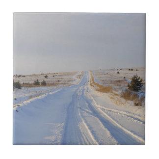 Camino del invierno en los campos azulejo cuadrado pequeño