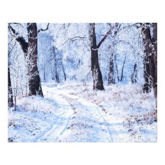 Camino del invierno fotografías