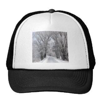 Camino del invierno gorras de camionero