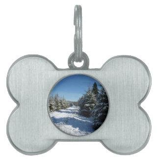 Camino del invierno placas de nombre de mascota