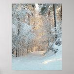 Camino del invierno posters