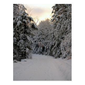 Camino del invierno postal