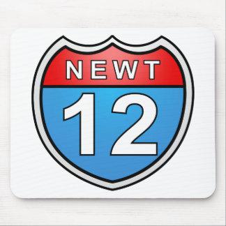 Camino del Newt a la Casa Blanca 2012 Alfombrilla De Ratones