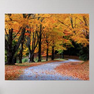 Camino del otoño impresiones