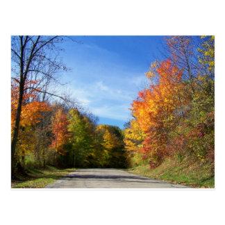 camino del otoño postal