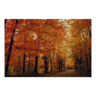 Camino del otoño póster