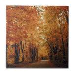 Camino del otoño tejas  cerámicas