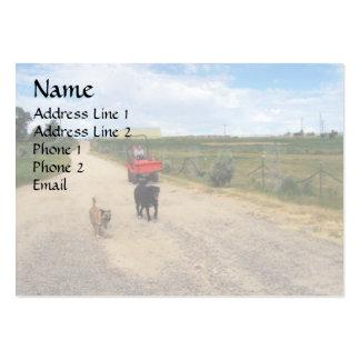 Camino del rancho del montar a caballo tarjetas de visita
