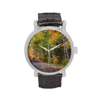 Camino derramado hoja de la grava con color del relojes