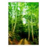 Camino en la tarjeta de felicitación de maderas