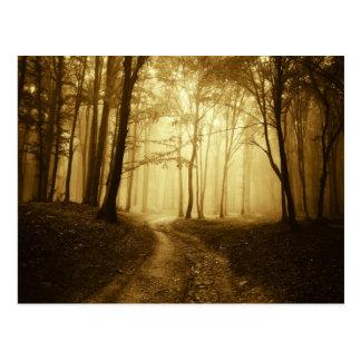 Camino en un bosque oscuro con niebla postales