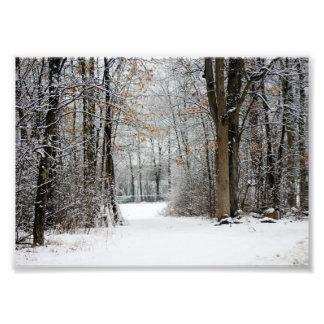 Camino entre la impresión fotográfica 7x5 fotografía