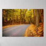 Camino forestal en caída impresiones