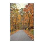 Camino forestal impresiones en lienzo estiradas