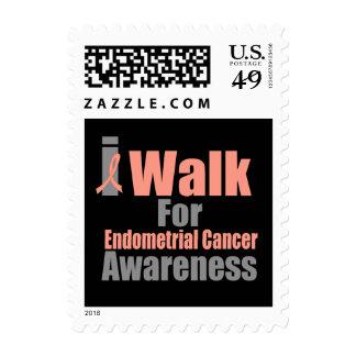 Camino para la conciencia del cáncer endometrial envio